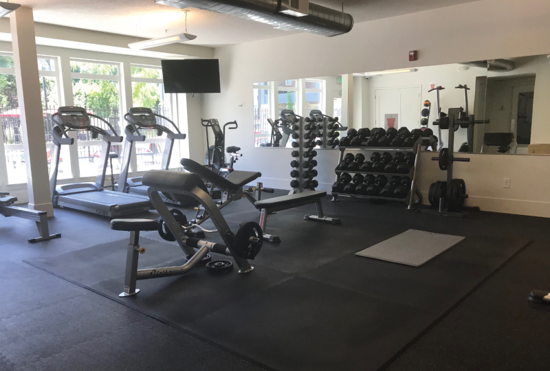 Modern Fitness Centers
