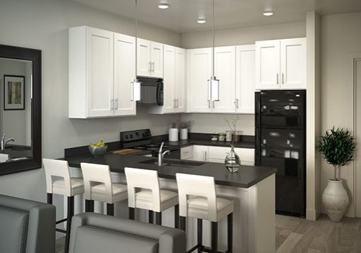 Artesian-Springs-Kitchen3